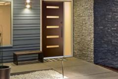 Entry door contemporary